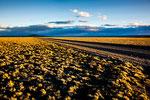 Bei Sonnenuntergang zeigt sich die Pampa von ihrer schönsten Seite...