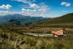 ....wir sind hier über 4.000 m und haben noch tolle Vegetation....