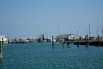 Blick von unserem Übernachtungsplatz auf den Hafen
