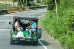 """....überall der """"Willy"""" aus Taxi und Transportmittel...."""