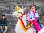 ....sogar das Lama ist weihnachtlich geschmückt.....