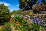 ...für diese Breitengrade ein toller Garten...