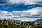 Die Strecke Cuenca nach Vilcabamba......