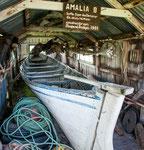 """...und auch ganz schnittige wie die """"Amalia""""..."""