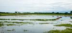 ....ganz viel Wasser wird zum Reisanbau genutzt....