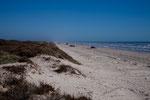 Padre Island - 170 km Strand vom Feinsten