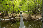...heute kann man bequem über eine Hängebrücke spazieren...