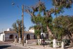 ...eine tolle Plaza mit Pfefferbäumen...