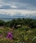 """Vulkanberge des """"Lake Clark NP"""" im Hintergrund"""