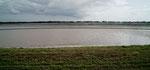 """Louisiana ist die """"Reiskammer"""" der USA"""
