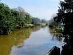 """Der Fluss """"Bayou Teche"""" mit seinen berühmten Flusskrebsen"""