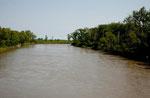 """Assiniboine River"""