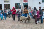 ....auf dem Kirchplatz trafen sich Großstadt - Tussis mit Schaf.....