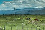 Die tolle Anfahrt in die Berge von Cumbrecita...