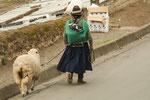 ....statt ein Schaf an der Leine