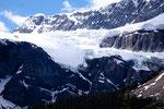 Athabascar Gletscher reicht fast bis an den Hwy 93