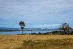 ...Chiloe ist ein sehr liebliche Landschaft (im Sommer).