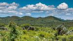 ...im Frühjahr ist es hier sehr grün - das ändert sich im trockenen Winter...
