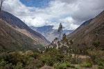 "Fahrt zum 4.300 m hohen Pass von ""Abra Malaga""..."