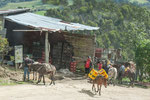 ....Esel Transport für Coca Cola in den Bergen....