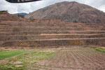 ...Terrassenfelder noch aus Inka-Zeiten...