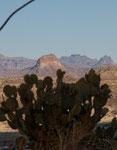 die Chisos Berge im Hintergrund