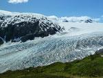 Harding Icefield 3