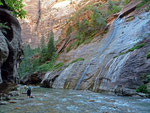 The Narrows, Zion Nationalpark 1