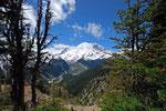 Mount Rainier 1