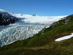 Exit Glacier 1