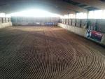 Reithalle 20 X 40 Meter mit Reiningboden