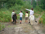 Virée des enfants dans la forêt
