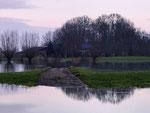 High water IJssel during wintertime -2
