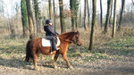 petit tour au Poney club