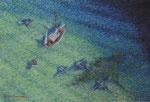 「休むヨット(寝ている間にマンタが通る)」P50 油彩