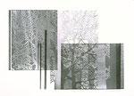 Éclats de givre, 2006, bois gravé et relief, 50 X 65 cm
