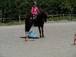 Der Slalomparcours um Leitkegel mit flatterten Plastiktüten bereiteten Reitern und Pferden kaum Probleme.