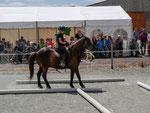 Die zweite Aufgabe bestand darin, sein Pferd zwischen Rohren rückwärts und um die Ecke zu richten. Ohne die richtigen Hilfen an das Pferd war das nicht zu bewerkstelligen.