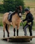 Die letzte und wohl schwierigste Aufgabe war das Reiten über eine Holz-Wippe. Während einige Pferde ganz cool die Übung absolvierten, waren andere doch eher skeptisch und es bedurfte einige Überzeugungskraft der Reiter.