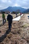 さとやま農学校2014コース(1期)では1月まで講座がありました。最後に凍てついた畑で作業。