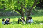 暑いほどの新緑の一日。ヨモギや野菜やハーブをゆっくり摘んで、ランチは栗の木の下で。