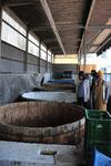 漬物も作っています。キュウリの漬物の樽。一番手前は数百キロあるコンクリートの重し。クレーンで釣って移動するそうです。