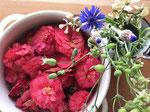 椿の花と、小さな花はイタリア野菜のストリドーロの花。ハコベと同じなでしこ科です。青い花はコーンフラワーで、こちらはお茶にしていただきました。