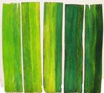 Titel: lichtvolles Wachstum Tempera auf gewelltem Furnier, Vorderseite Grün, Rückseite Gelb: 5 mal 34cm/116cm frei beweglich