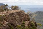 Ein Trampelpfad führte uns vom Landside Lookout bis hinüber zu den steilen Felsklippen.