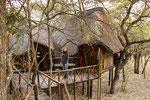 Die Baumhäuser wurden um die Bäume und Äste, die teilweise sogar noch durch die Zimmer wachsen, herum gebaut.