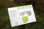 Hill o' Many Stanes ist die größte und besterhaltene mehrreihige Steinsetzung in der Grafschaft Caithness im Nordosten Schottlands.