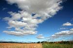 Landschaft bei Edzell (Grafschaft Angus).