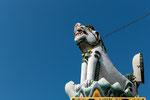 Der Schneelöwe ist das Schutztier des Tempels.