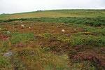 Die Reihen kleiner Steine sind etwa 4000 Jahre alt und liegen am Südhang eines kleinen Hügels. Es wird angenommen, dass die Steinreihen für Zusammenkünfte oder religiöse Zeremonien verwendet wurden. Auch könnten sie einen Sonnen- oder Mondkalender darstel